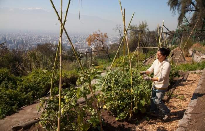 Los 7 secretos que esconde el Parque Metropolitano
