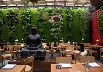 Vietnam Discovery, el primer vietnamita de Santiago ahora está en Vitacura