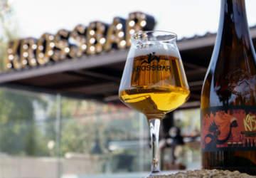 Ya puedes probar la mejor cerveza chilena del 2018