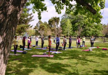 Las dinámicas clases de yoga en los parques santiaguinos