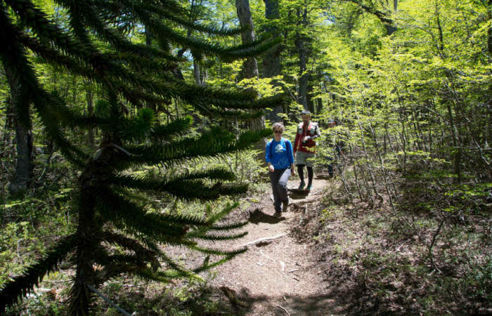 Uso de mascarillas y prohibición de acampar, así son los protocolos para la reapertura de los Parques Nacionales