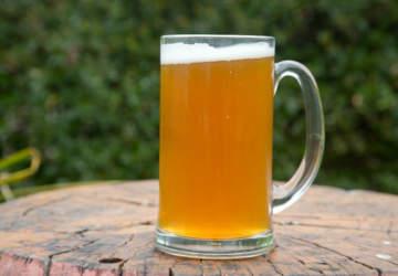 5 cervezas baratas recomendadas por un sommelier de lujo