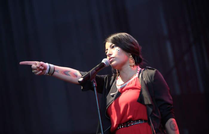 30 conciertos gratuitos en Santiago, Chillán y La Serena tendrá el Día de la Música Chilena