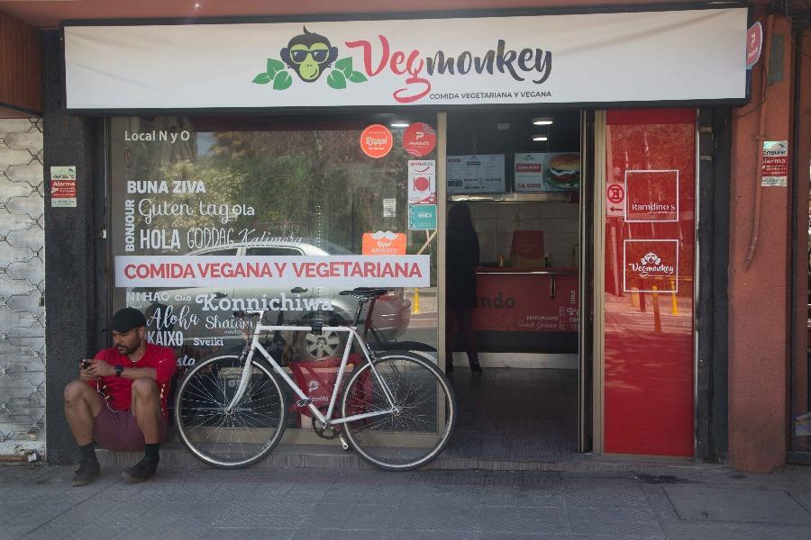 Vegmonkey