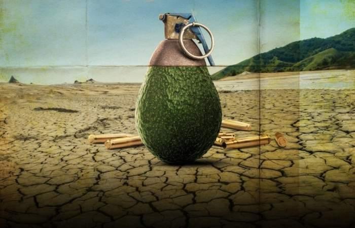 Rotten 2 muestra en Netflix la escasez de agua que provoca el cultivo de paltas en Petorca