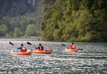 Parque Futangue/ Lago Ranco
