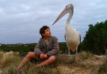 Amigos Para Siempre: Una lección de compañerismo y conservación