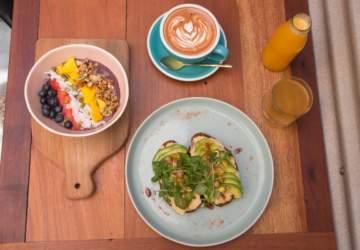 Puelo Café: El nuevo café de especialidad orgánico y sustentable