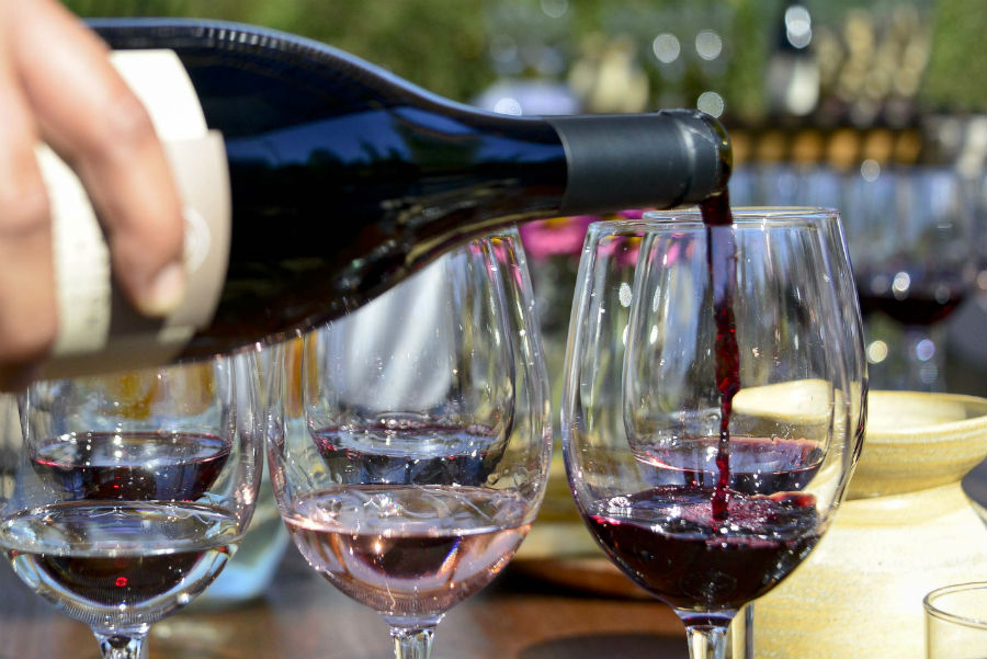 Fiesta de la Vendimia de Colchagua vuelve con cuatro días para brindar con mucho vino en Santa Cruz