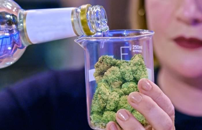 El ingrediente secreto: cannabis, el reality de Netflix de cocina con marihuana