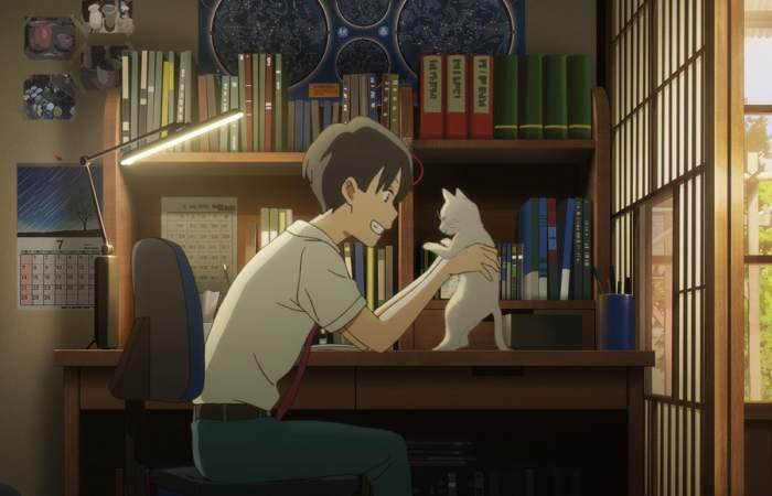 Amor de gata: el fantástico y romántico anime que llegó a Netflix