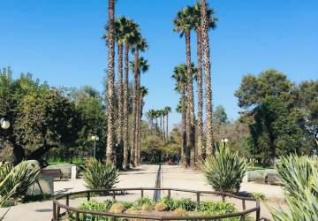 Disfruta de la naturaleza en los parques que reabrieron esta semana