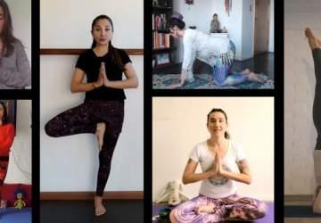 Vivo Yoga de GAM