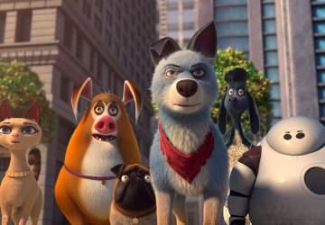 Mascotas unidas: la película animada solo para los niños más pequeños que llega a Netflix