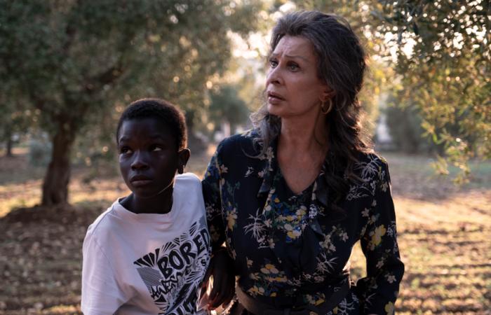 La vida ante sí, la emotiva película italiana protagonizada por una jugada Sophia Loren