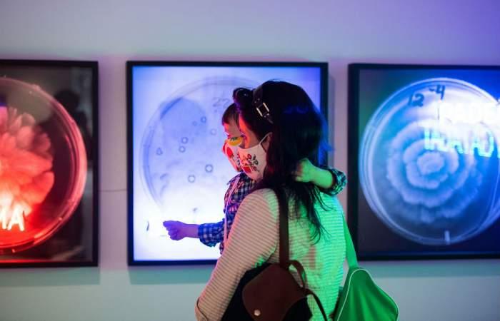 Gallery Weekend tendrá películas, charlas y recorridos virtuales por galerías de América