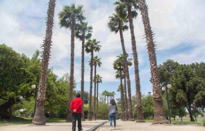 Parque Bernardo Leighton, de vertedero a uno de los lindos secretos de Estación Central