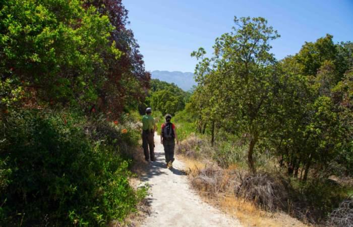 El Parque Nacional Río Clarillo se luce con senderos de trekking, de relajo y zonas de picnic