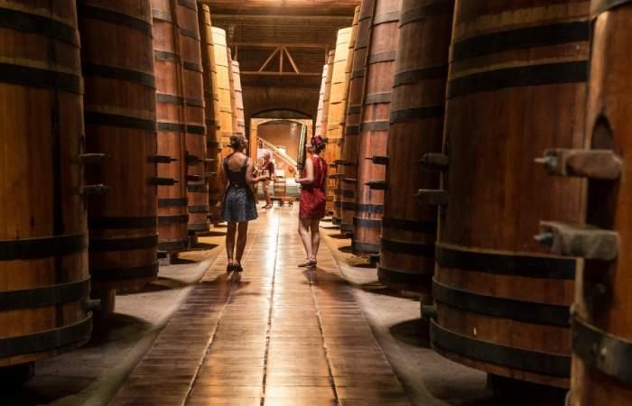Cousiño Macul: la viña en medio de Santiago que puedes visitar de noche