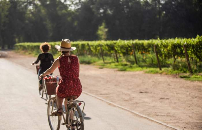 Cousiño Macul: la viña en medio de Santiago que puedes recorrer en bici