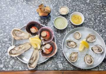 Marina Mar de Tapas es el nuevo lugar favorito de los amantes de los mariscos