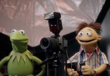 Muppets ahora: la nueva serie original de Disney+ con Kermit y compañía
