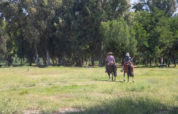 Peñaflor, el paseo perfecto para conocer enormes parques, tomar buena cerveza y descansar en frescas terrazas
