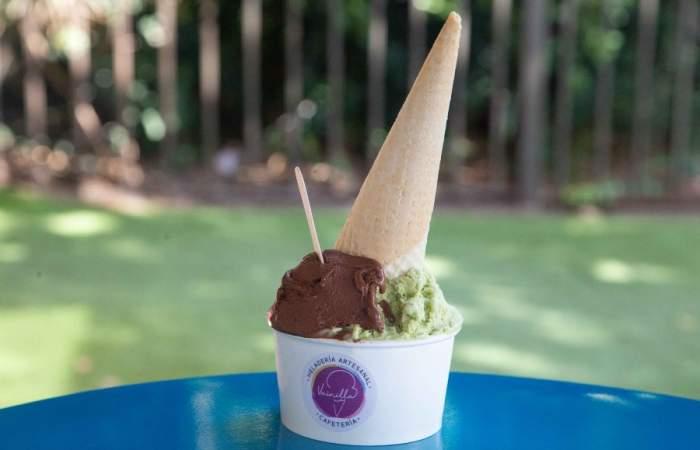 Vainilla, la heladería artesanal que inunda de sabor a la Av. Manuel Montt