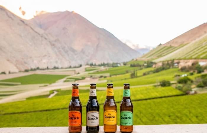 The Top Beer, el concurso en que podrás tomar cerveza artesanal y calificar a la mejor