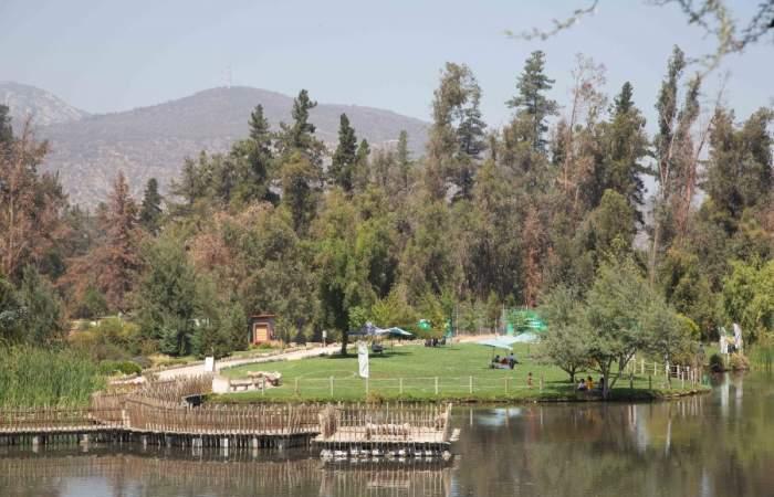 El parque que embellece Puente Alto con cinco hectáreas verdes y una laguna con patos, garzas y cisnes