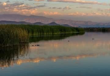 Ya puedes volver a visitar el Humedal Batuco y su laguna declarada Santuario de la Naturaleza