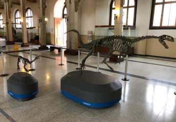Los museos que puedes visitar de forma presencial y que te permitirán disfrutar del arte