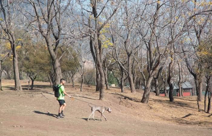El parque en la ladera del cerro San Cristóbal con juegos, canchas y mesas de picnic