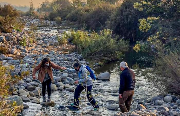 Mapocho asombroso: los recorridos gratuitos que invitan a conocer la flora y fauna del río