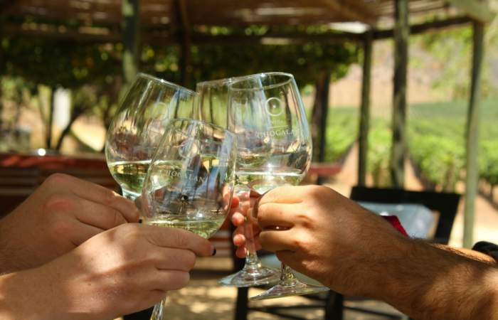 Las viñas abiertas cerca de Santiago que puedes visitar esta temporada