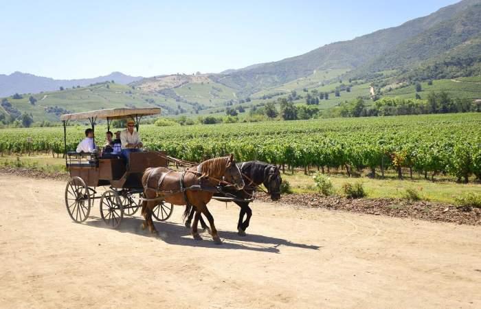 La viña chilena que está en el Top 5 de las mejores para visitar en el mundo